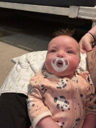 Dayton3